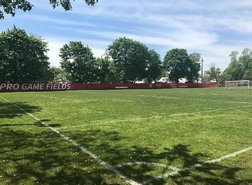 Pro Game Fields